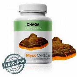Čaga extrakt - 90 kapslí á 500 mg extraktu