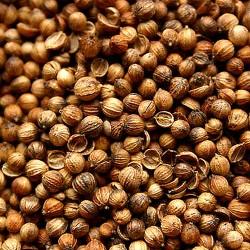 Koriandr plod celý - 35 g