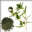 SATUREJKA zahradní/Saturejka záhradná (Satureia hortensis)-SUŠENÝ LIST