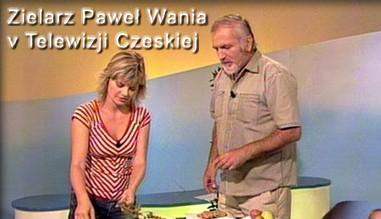 Zielarz Paweł Wania v Telewizji Czeskiej
