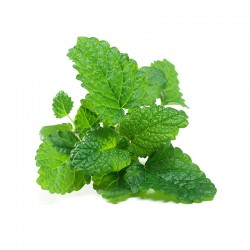 Lemon balm leaves - 50g