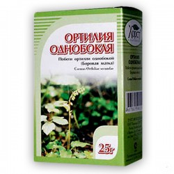 Nodding wintergreen (Orthilia sekunda) - 25g
