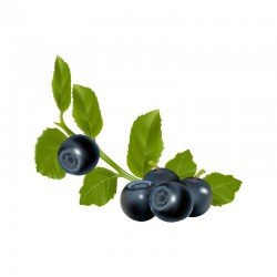 Bilberry leaf - 50g